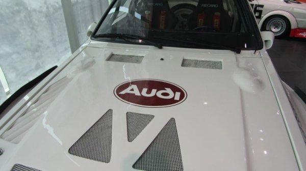 Photo1: 1/24 Audi Sport Quattro S1 Decal (1)